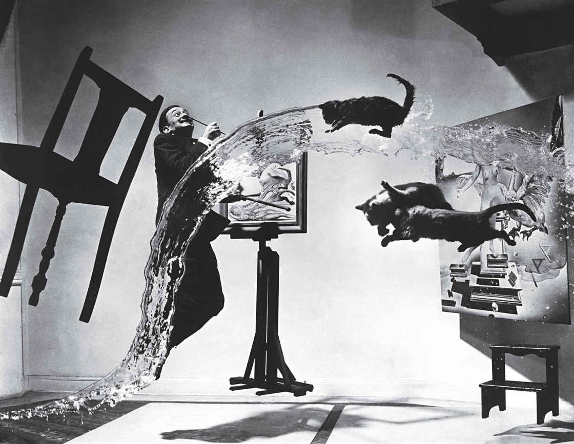 Time 100 Most Influential Images - Dali Atomicus