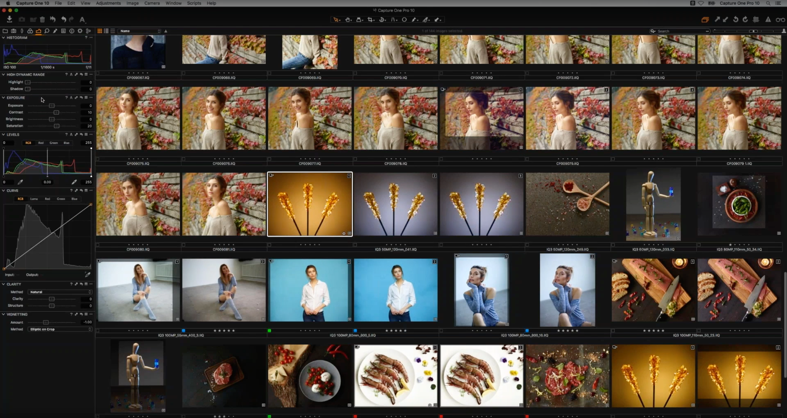Capture One Pro 10 interface