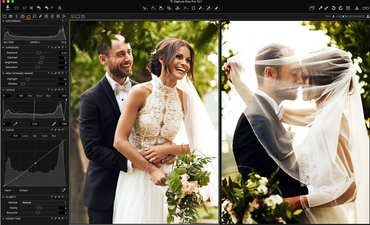 Capture One Pro 10.1 screenshot