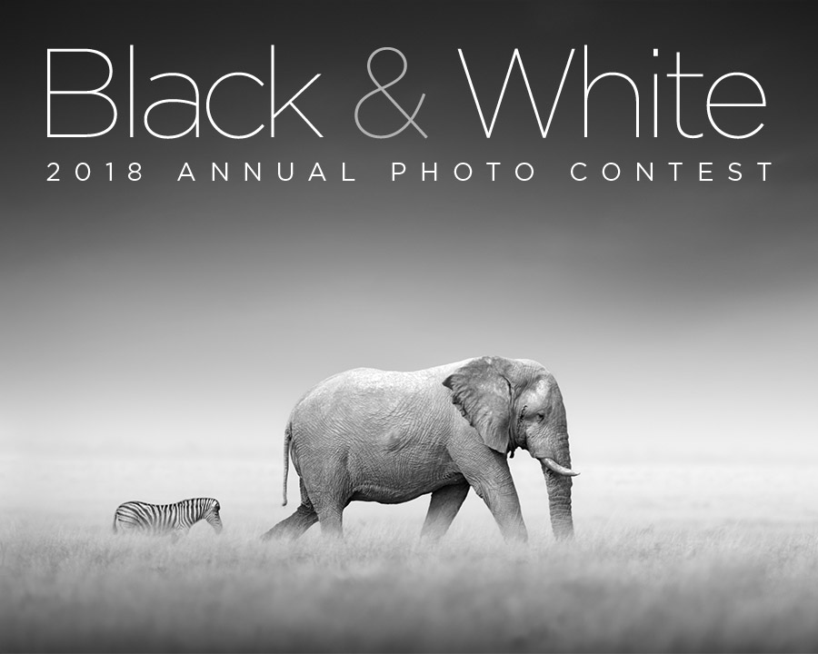 Digital Photo's Black & White Photo Contest