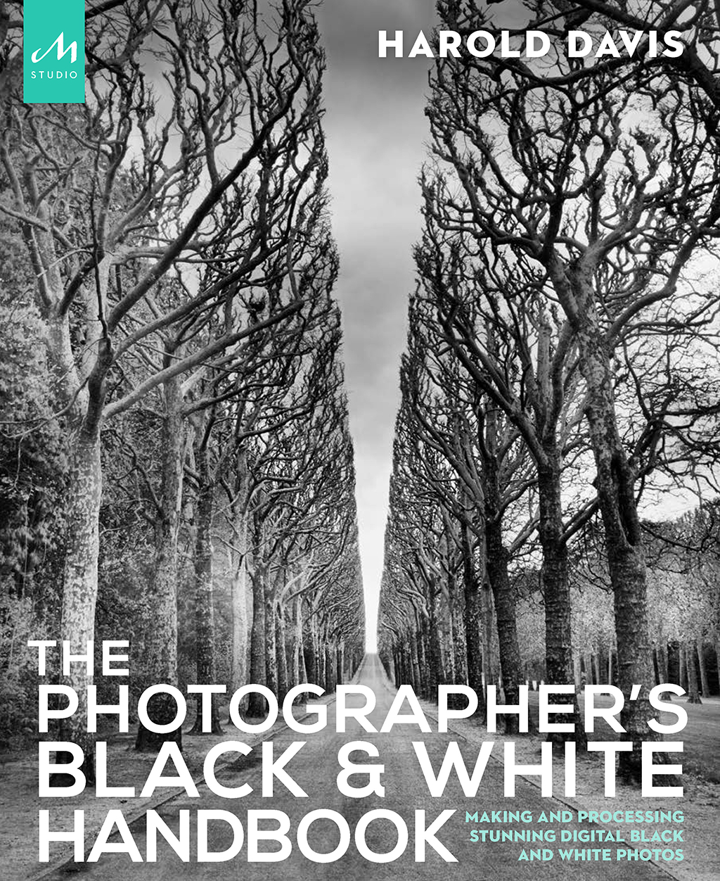 The Photographer's Black & White Handbook by Harold Davis is an example of a technical black-and-white photography book that teaches photographers how to create black-and-white photos.