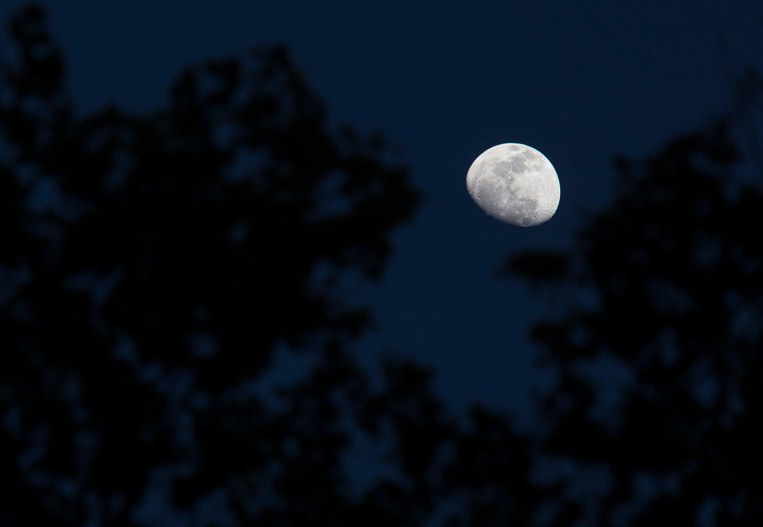 Photo of the moon shot with a pro camera