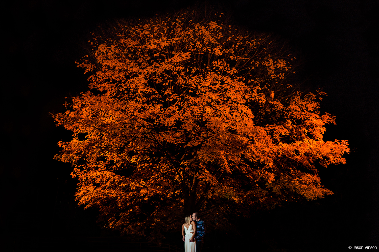 Photo of kissing couple under tree by Jason Vinson