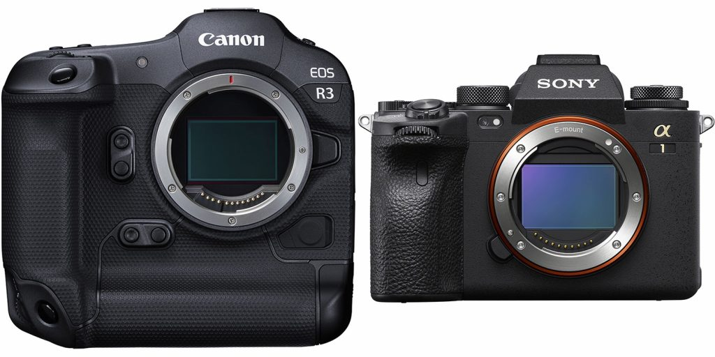 Is Mirrorless Really the Future of Cameras?