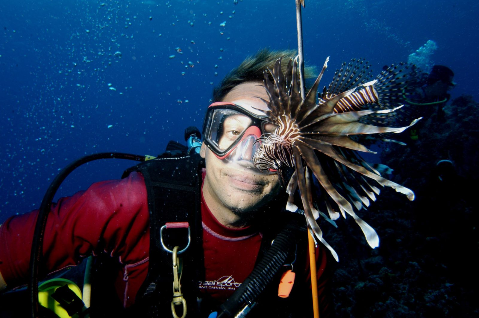 Culling lion fish
