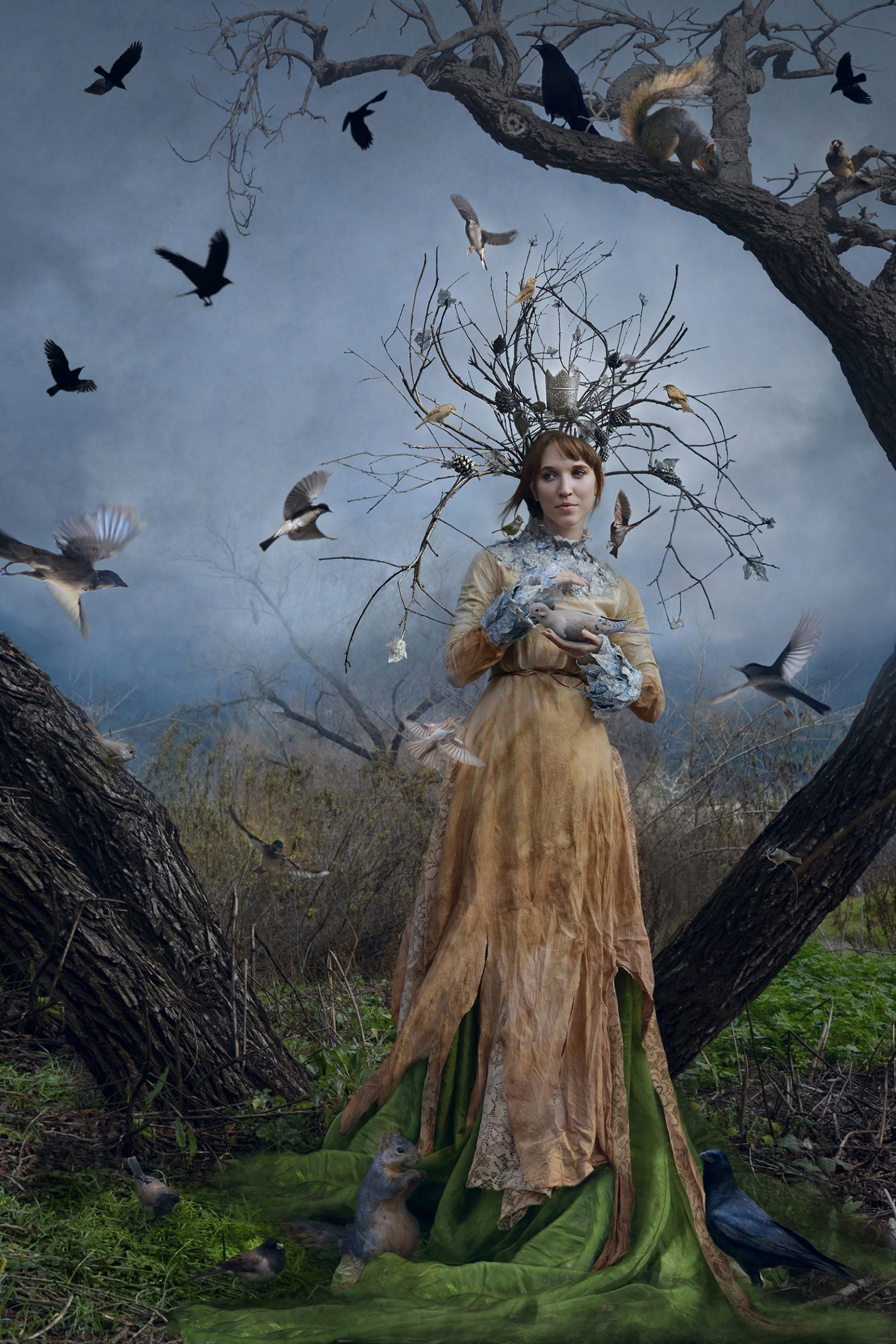 The Court of the Dryad Queen