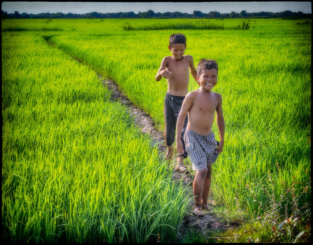 Boys Playing in the Rice Fields